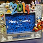 2014 Walt Disney World Frame