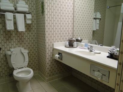 Hampton Inn Morganton Bathroom