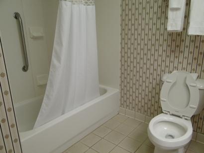 Hampton Inn Morganton NC Bathroom