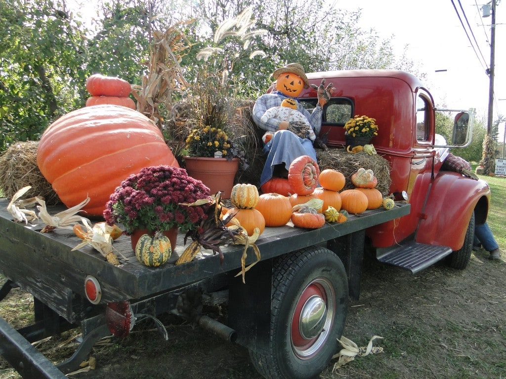 old red truck with scarecrow and pumpkins in back