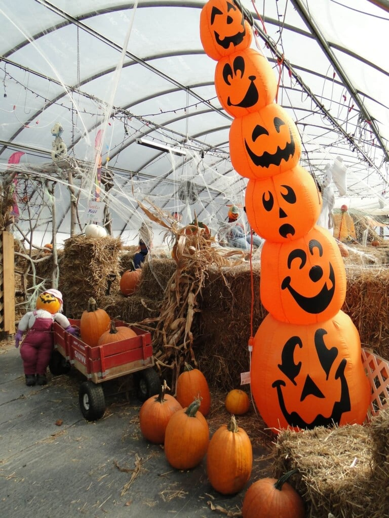 pumpkin blow up yard decoration in front of hay bale maze with red wagon full of orange pumpkins