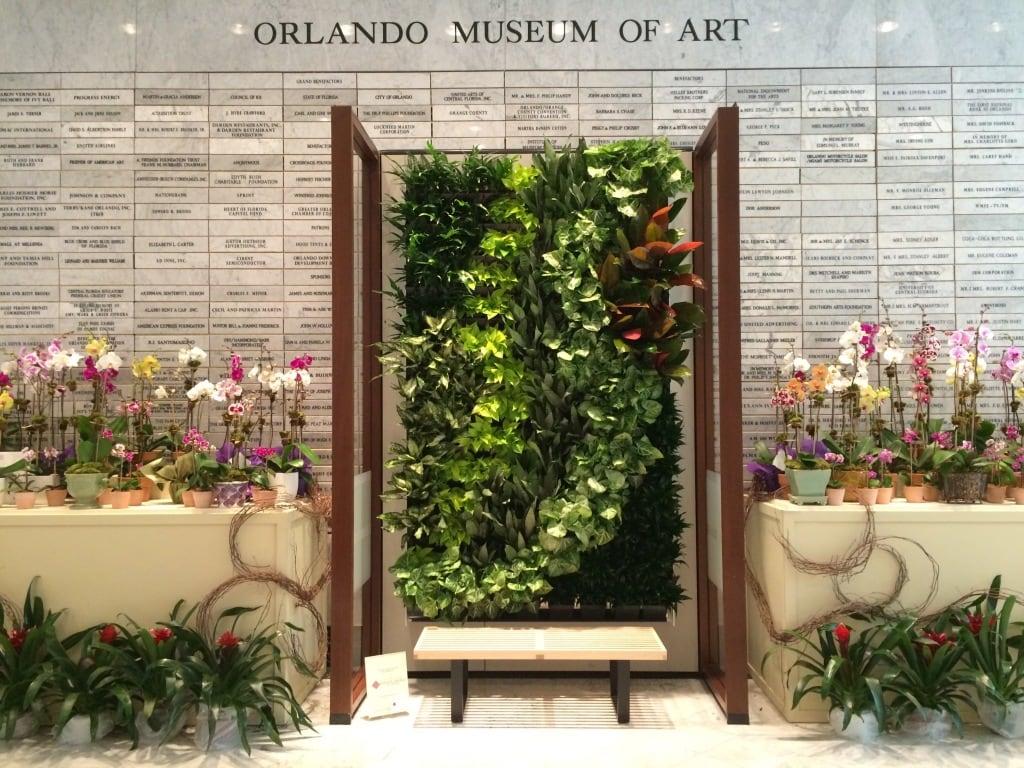 orlando musuem of art orchids antique vintage garden show