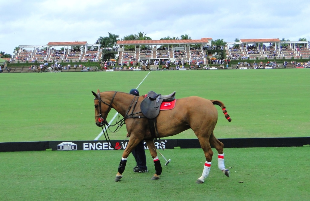 International Polo Club Palm Beach Florida Match
