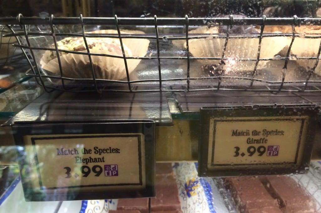 Match the Species Animal Poop Snacks Disneys Animal Kingdom