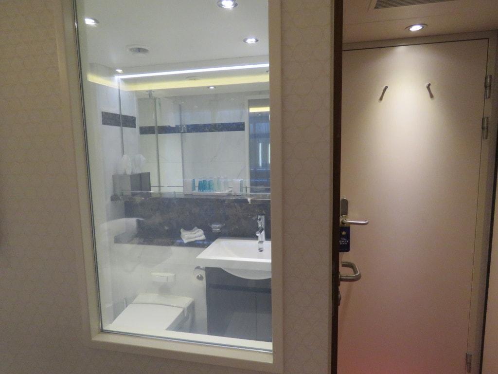 AmaCerto Fogging Bathroom Window AmaWaterways Room 223