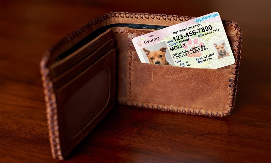 pet-wallet-card-quality