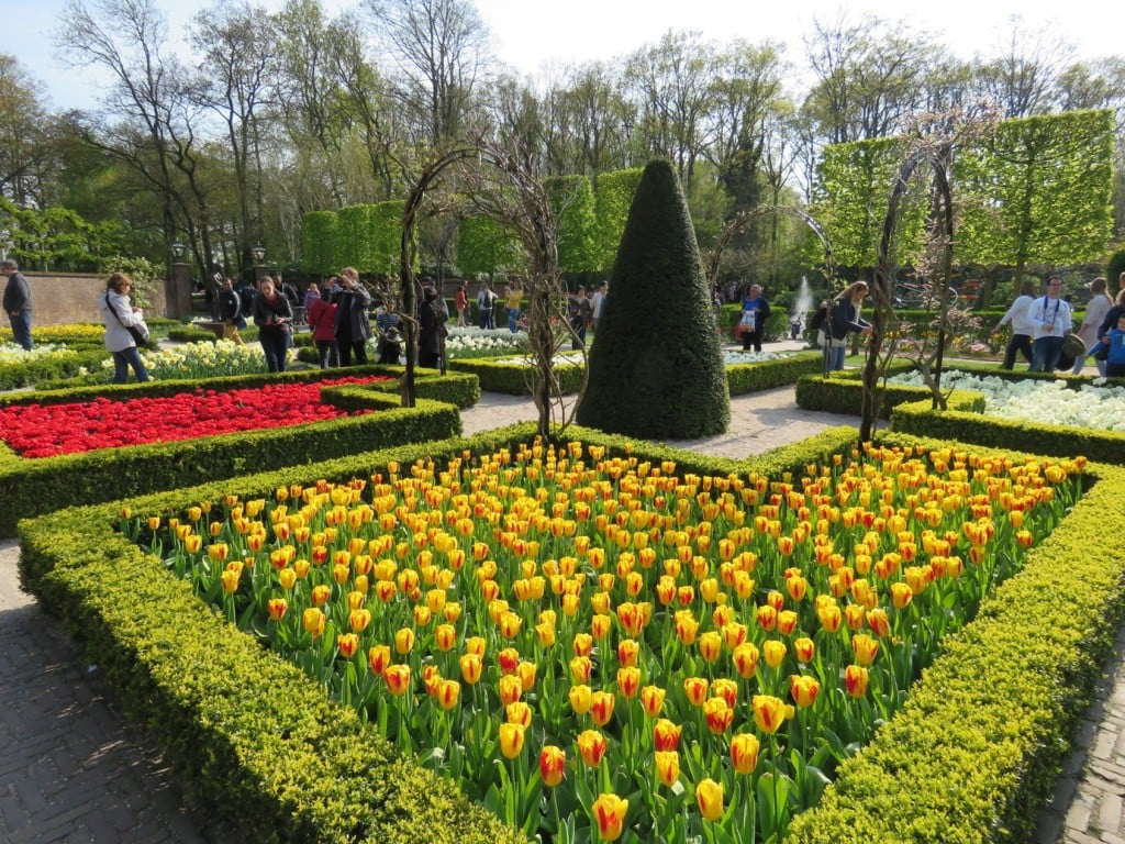 Keukenhof Gardens Amsterdam Netherlands Tulips Manicured Tulip Fields