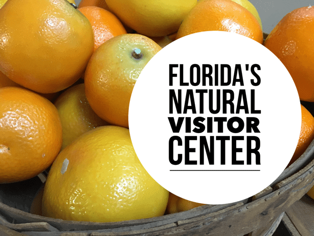 Florida's Natural Grove House Visitor Center in Lakeland