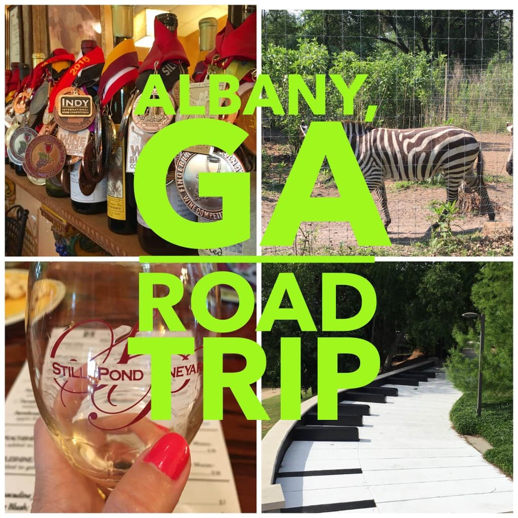 Albany Georgia Road Trip Collage