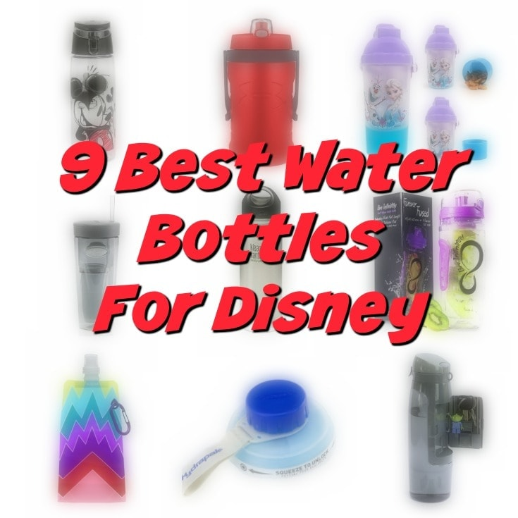 9 Best Water Bottles For Walt Disney World To Beat the Heat