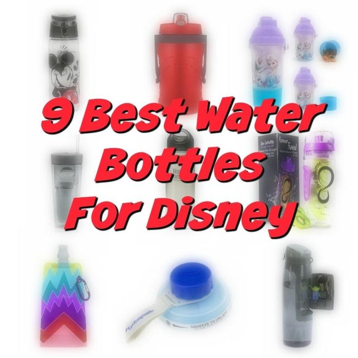 9 Best Water Bottles For Walt Disney World To Beat the Heat