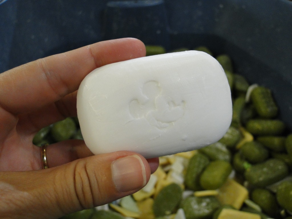 Clean the World Orlando Voluntourism Opportunity Mickey Mouse Soap Bar Disney
