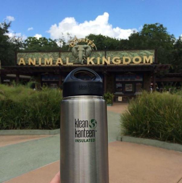 Klean Kanteen Water Bottle: 9 Best Water Bottles for Disney