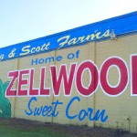 Long and Scott Farms in Zellwood, Florida: An Agritourism Visit