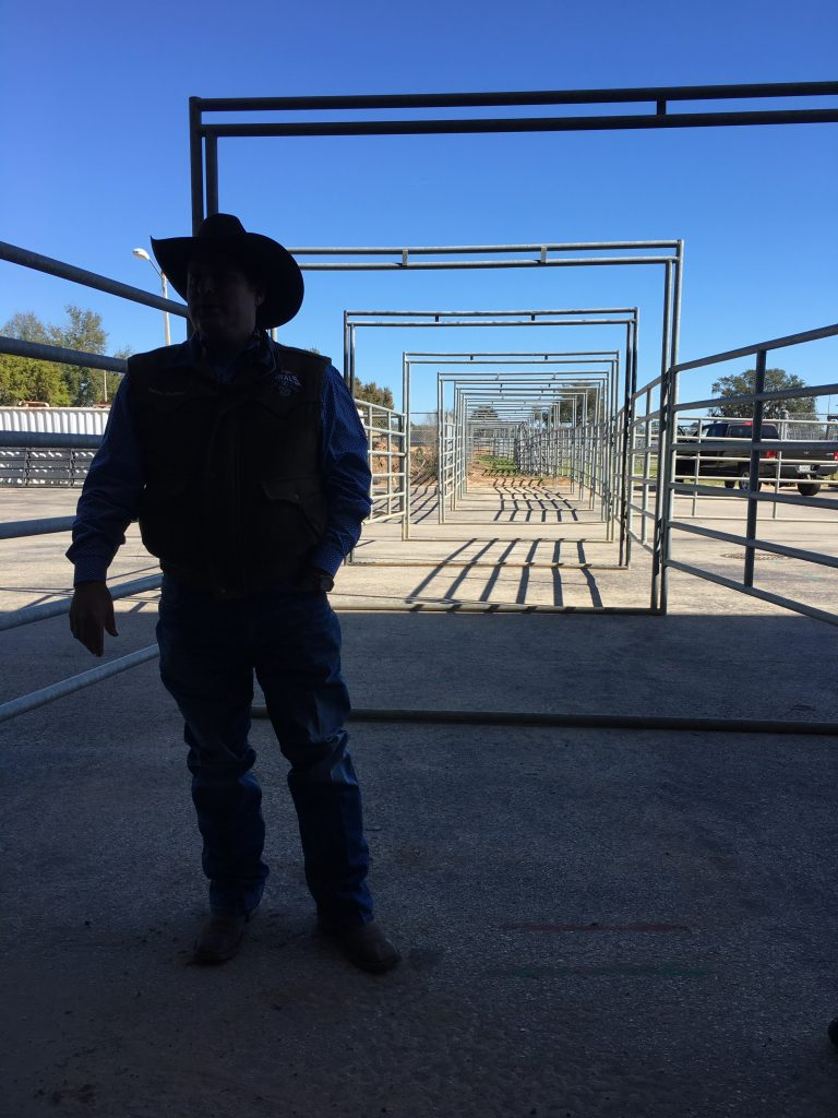 Silver Spurs Rodeo in Kissimmee offers sanctioned bullfighting for the first time in almost two decades. See professional bullfighters in Monster Bulls.