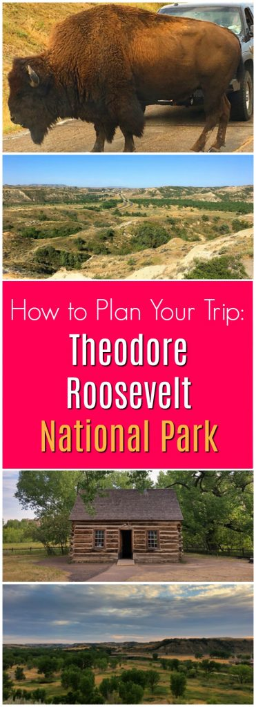 buffalo and landscapes of Theodore Roosevelt National Park