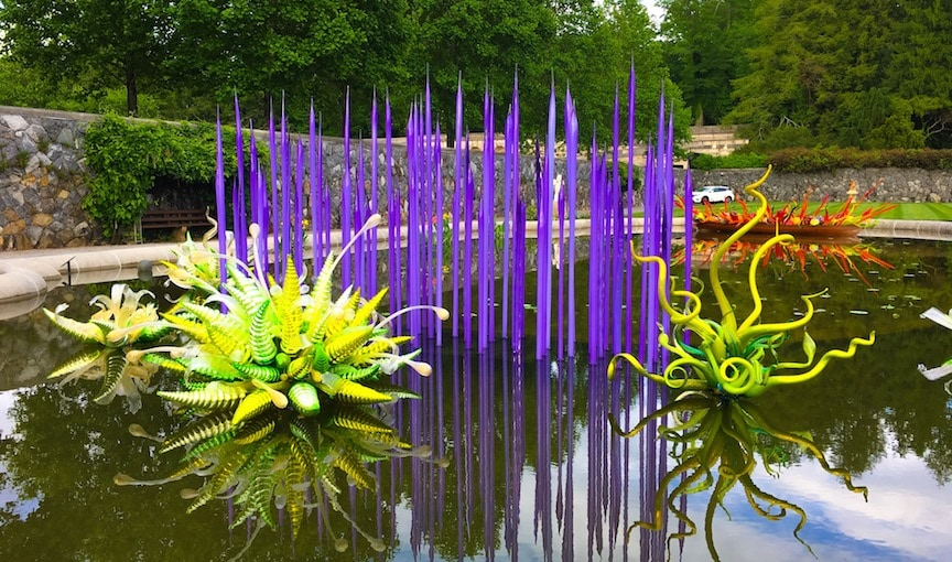 purple glass reeds in a pond surrounded by green Chihuly glass at Biltmore