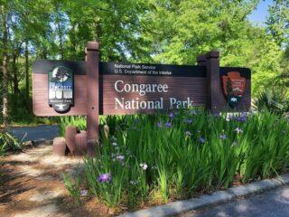 wooden entrance sign for Congaree national park south carolina