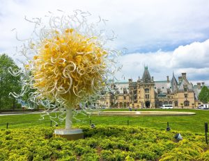 Chihuly at Biltmore Preview