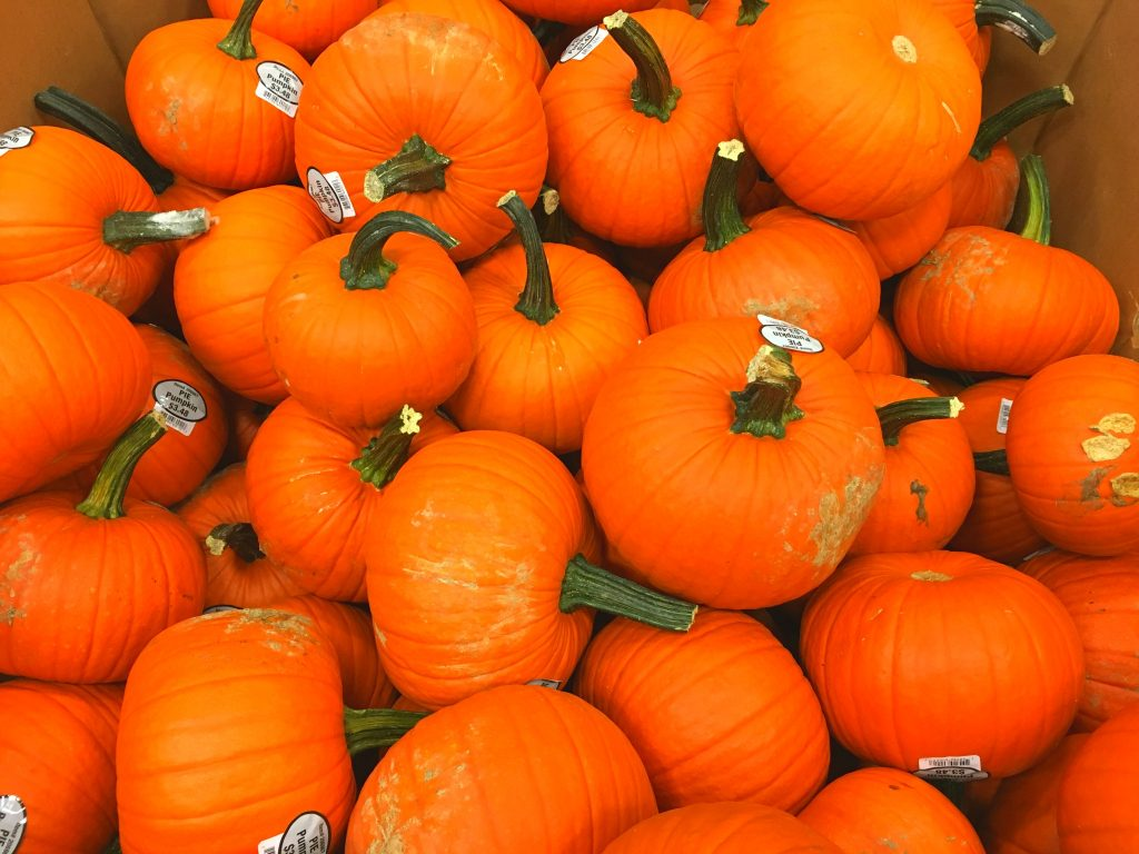 orange pumpkins in a large box