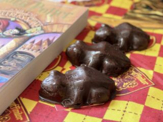 chocolate frogs candy next to Harry Potter book