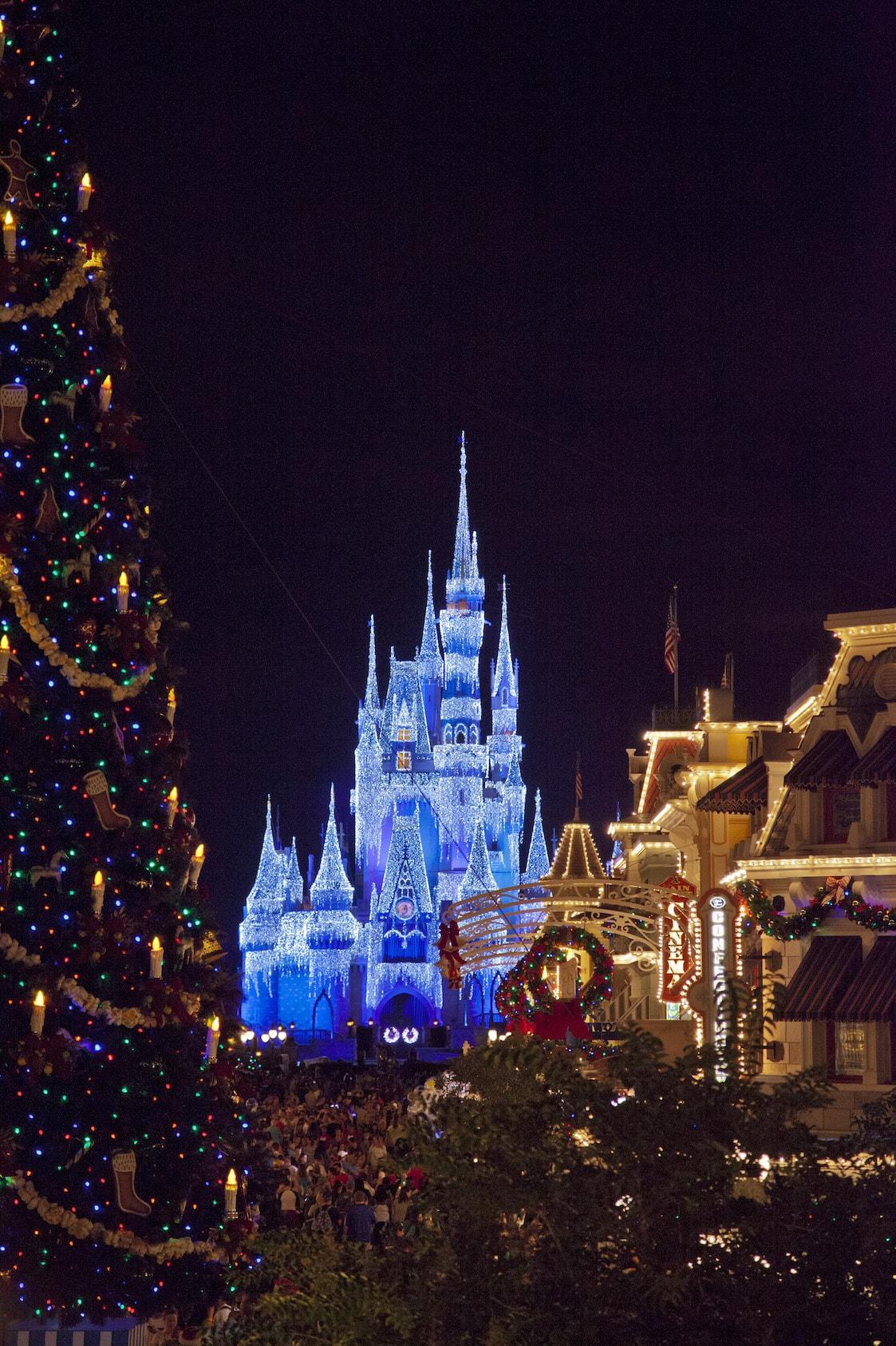 Cinderella Castle with Main Street USA and Christmas Tree Magic Kingdom at Night