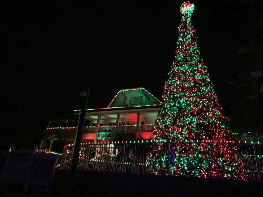 christmas tree in red and green lights at Busch Gardens Tampa