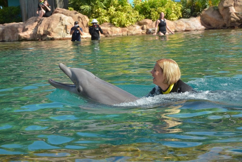 Kim Swimming with Dolphin Discovery Cove