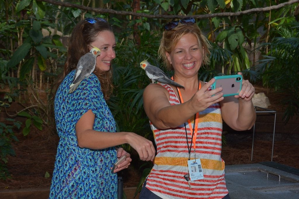 women with birds on their shoulder taking a selfie photograph at Discover Cove Orlando