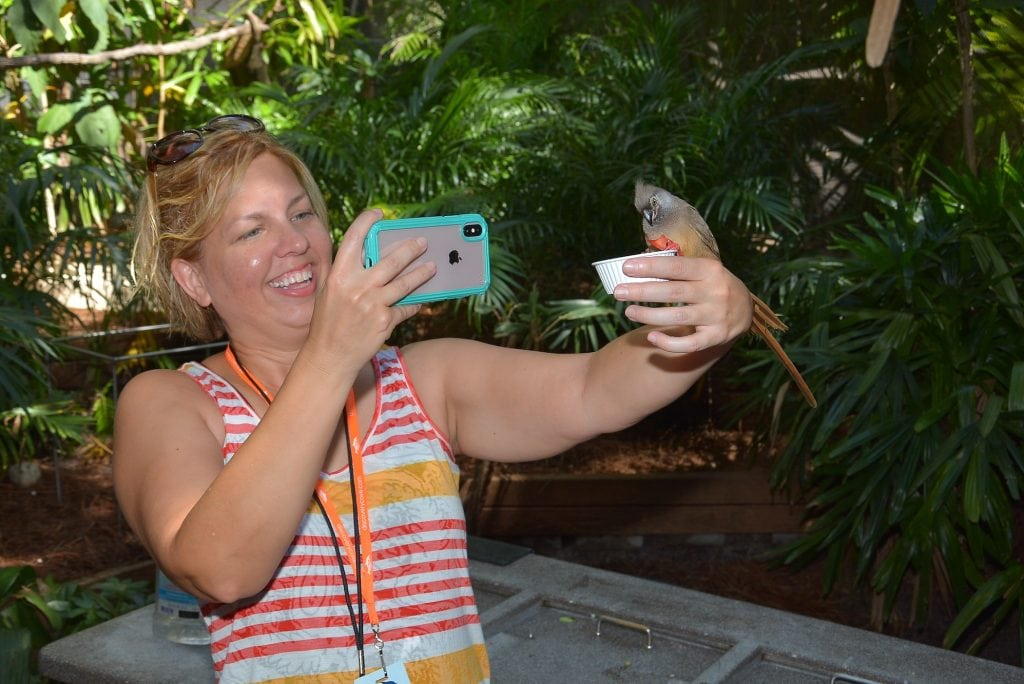 woman taking a picture of a bird eating from her hand in aviary at Discovery Cove in Orlando