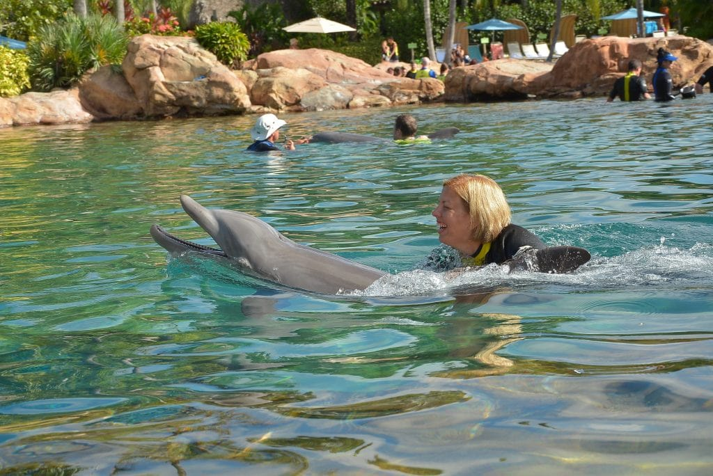 Kim Swimming with Dolphin Discovery Cove Orlando Florida