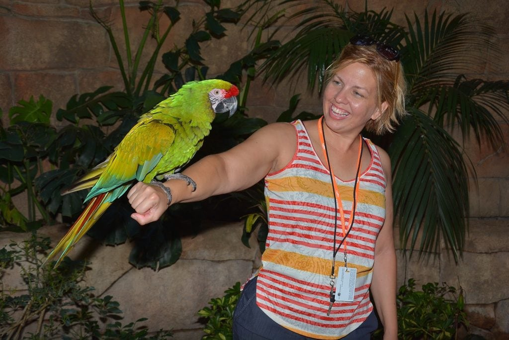 woman with green parrot sitting on outstretched arm Discovery Cove Orlando