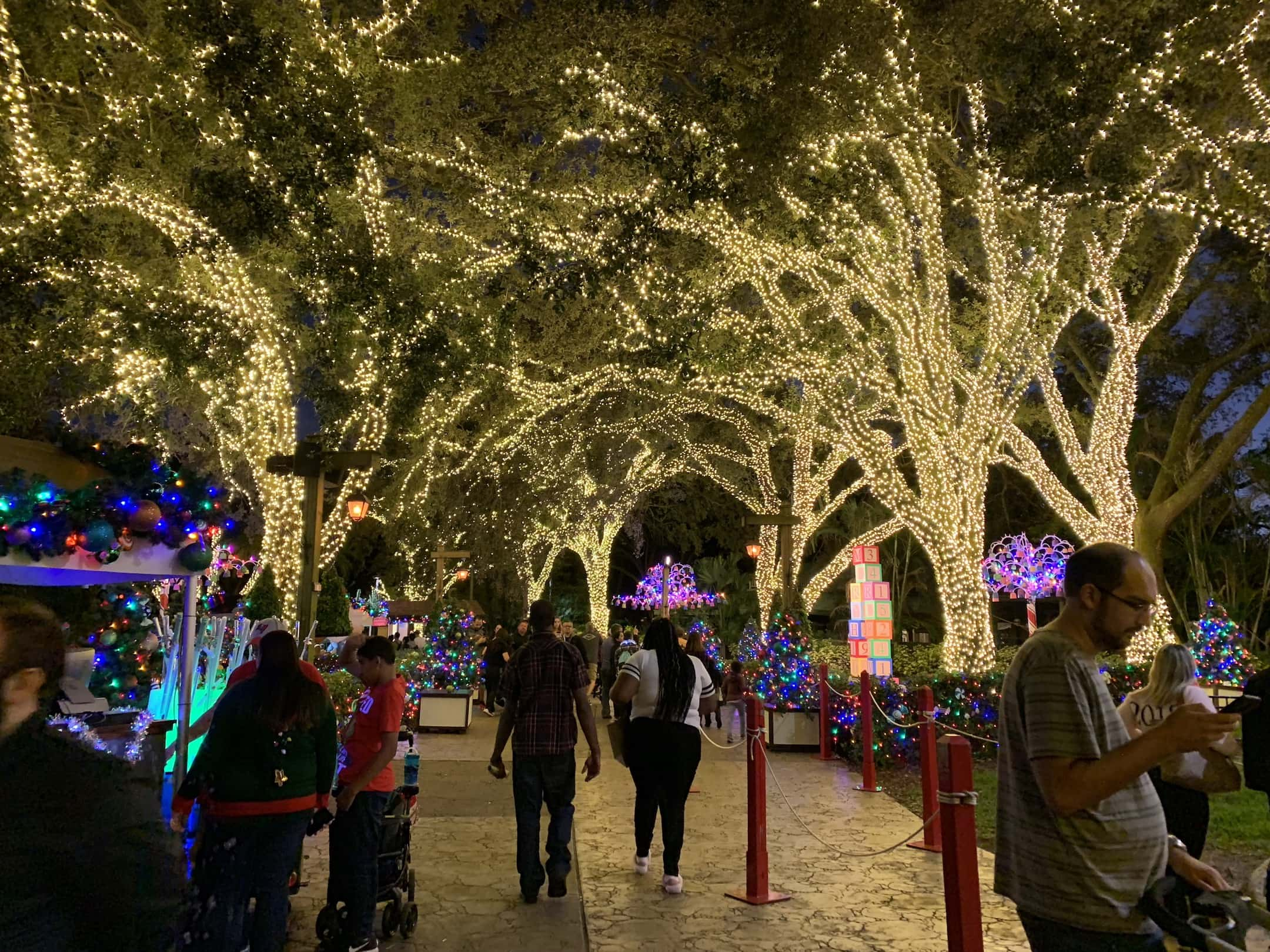 Christmas Kangaroo Lights.Busch Gardens Christmas Town Tampa Bay 2018 Kim And Carrie