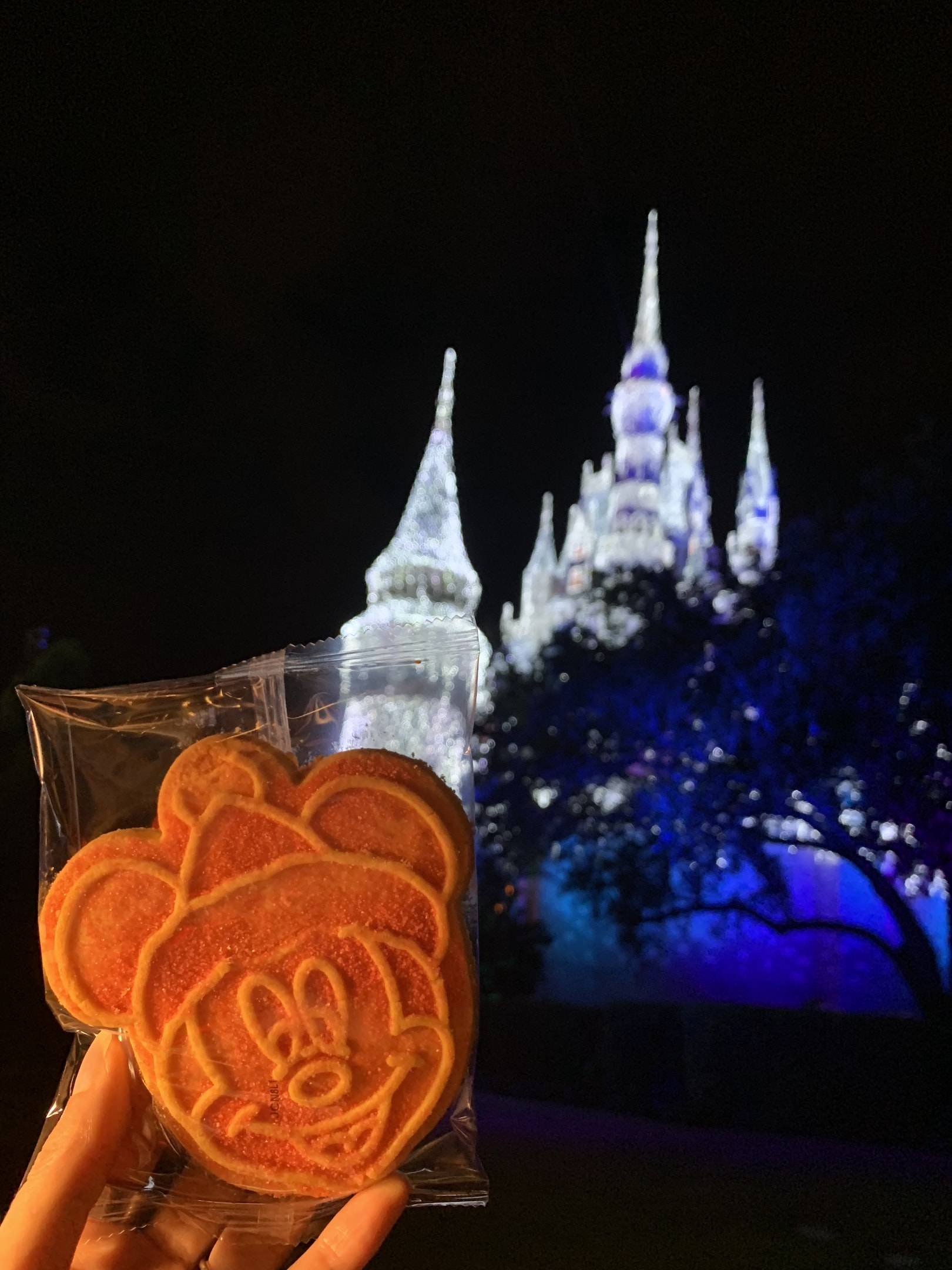 Mickey Shaped Cookie Mickey's Very Merry Christmas Party Magic Kingdom