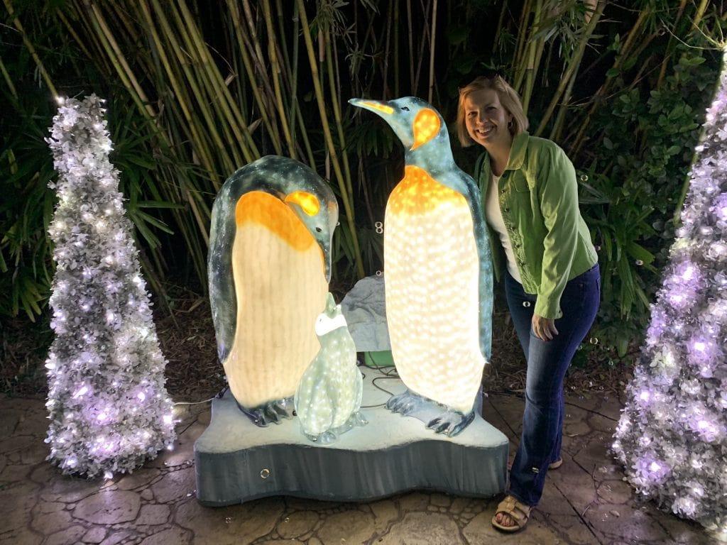 Penguins Busch Gardens Christmas Town Tampa Bay