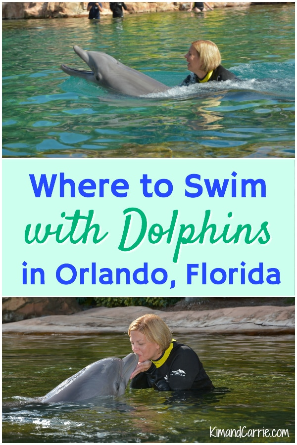 swimming with dolphins in Orlando Florida