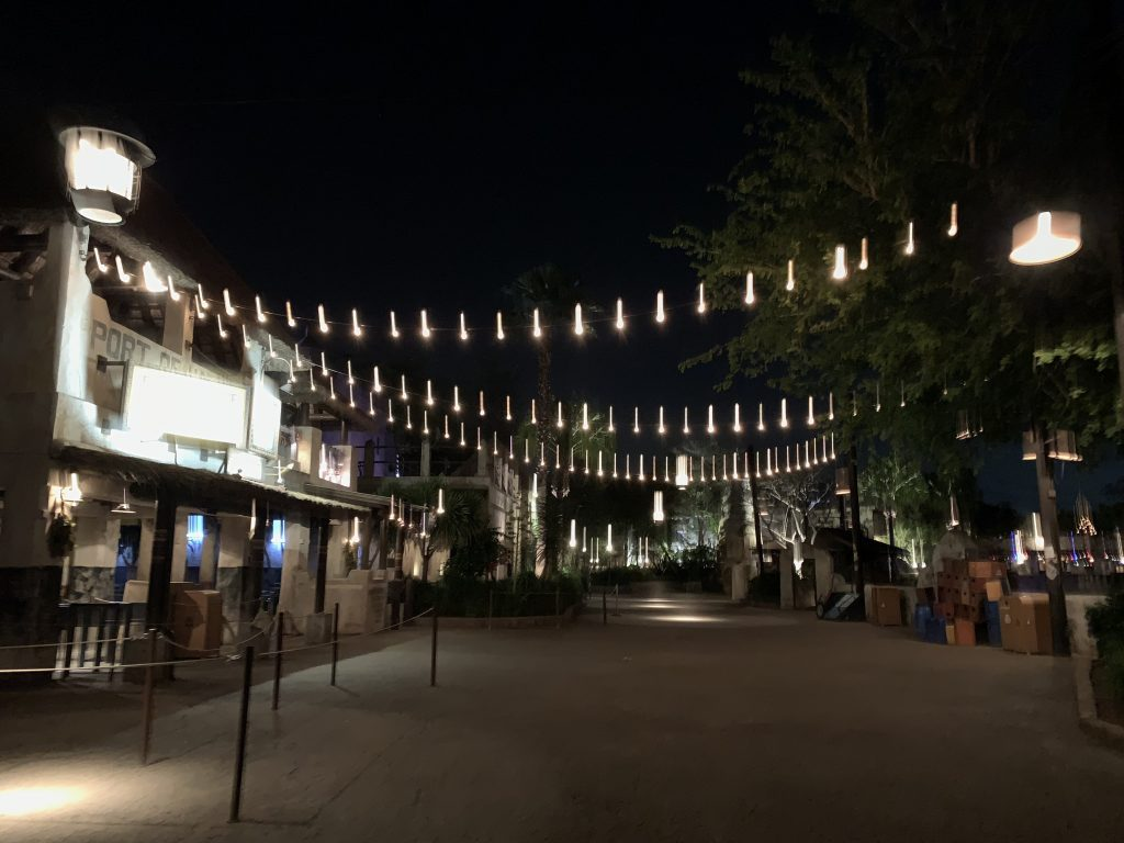 Disney After Hours Disney's Animal Kingdom No Crowds