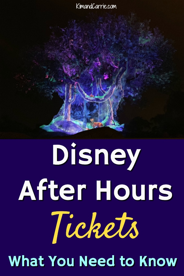 Disney After Hours Tickets What to Know