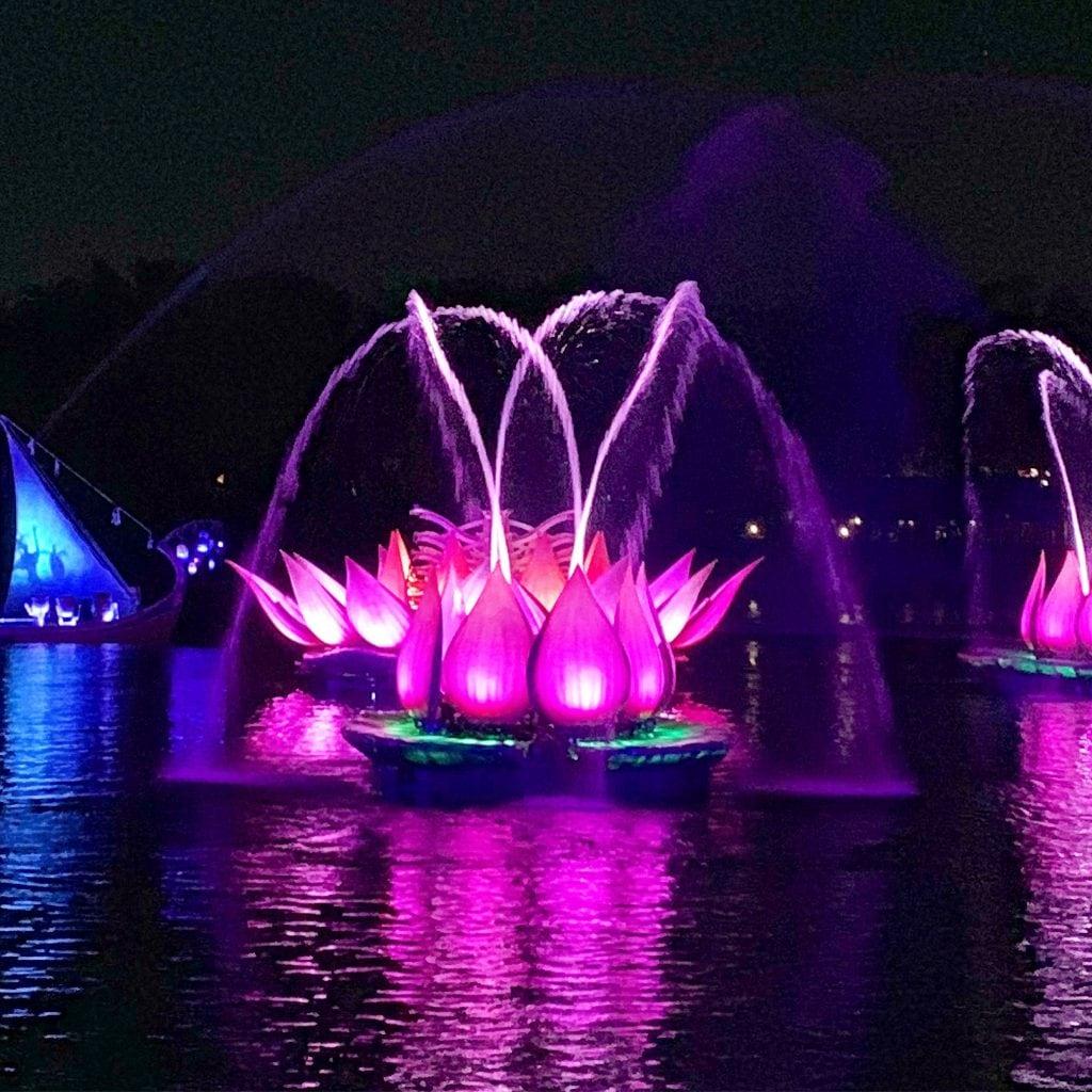 Disney Animal Kingdom River of Light