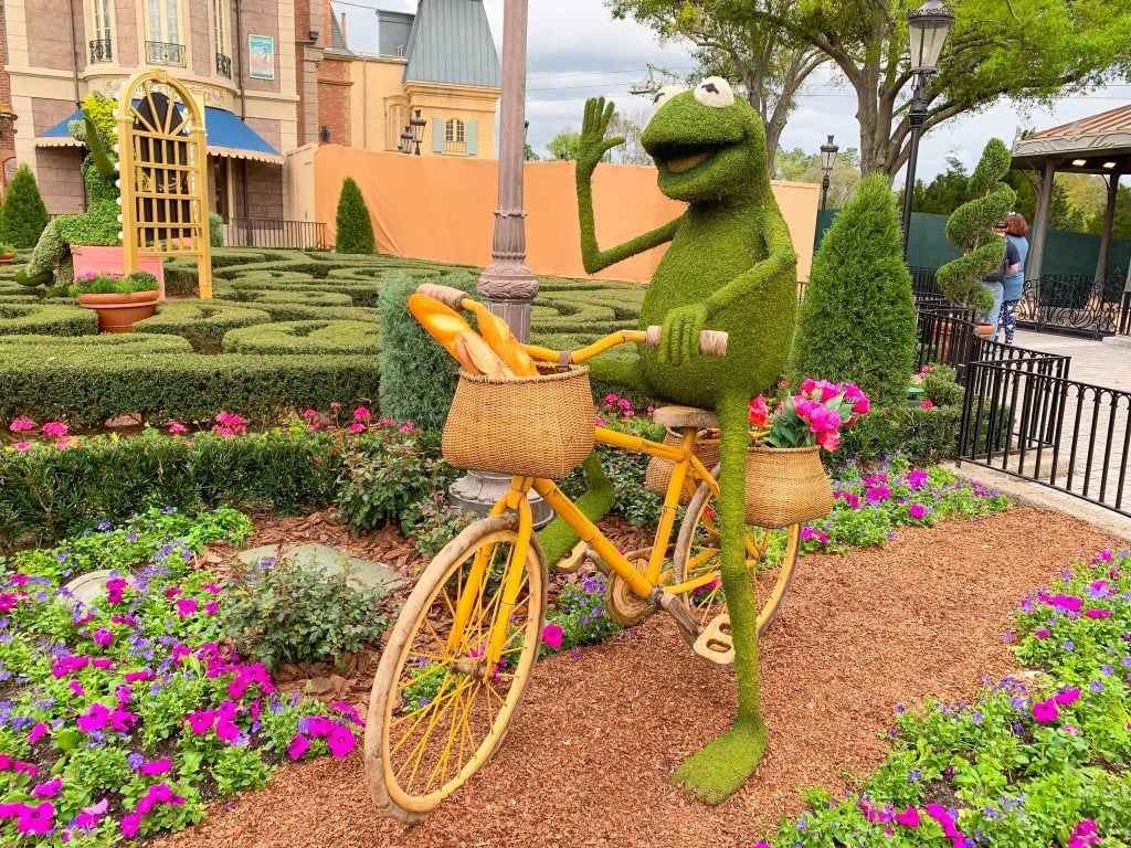 kermit topiary riding a bike in France pavilion Epcot flower and garden festival