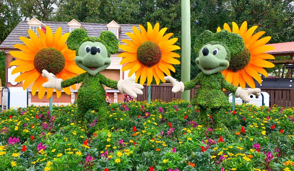 Epcot Flower and Garden Festival Mickey and Minnie Topiaries Sunflowers