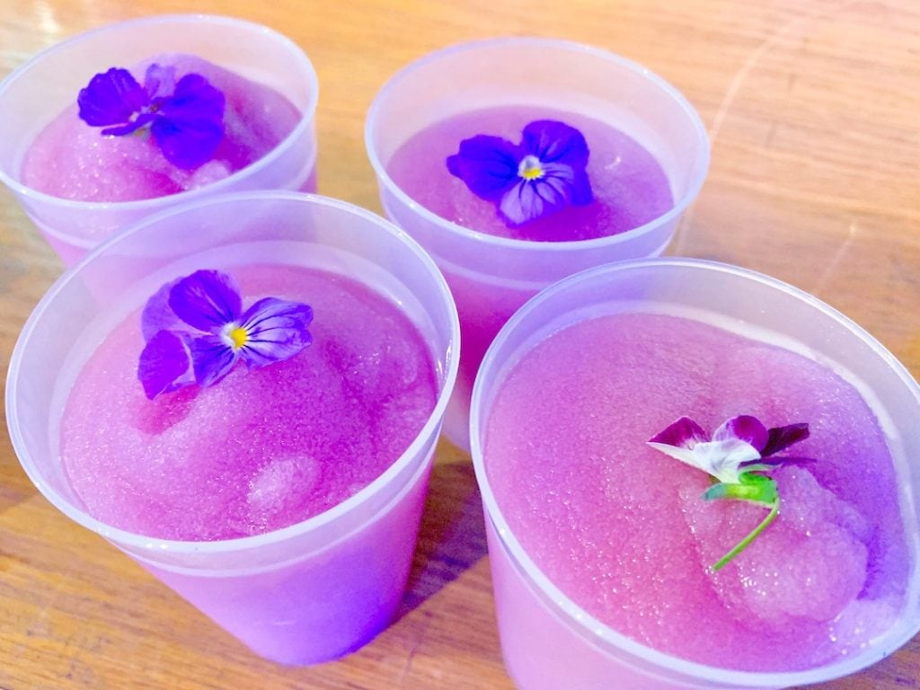 four white cups filled with violet lemonade topped with edible flowers Epcot Flower and Garden Festival