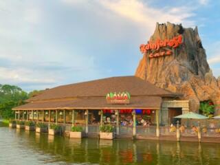 Rainforest Cafe Landrys Select Club Walt Disney World Restaurants Secrets