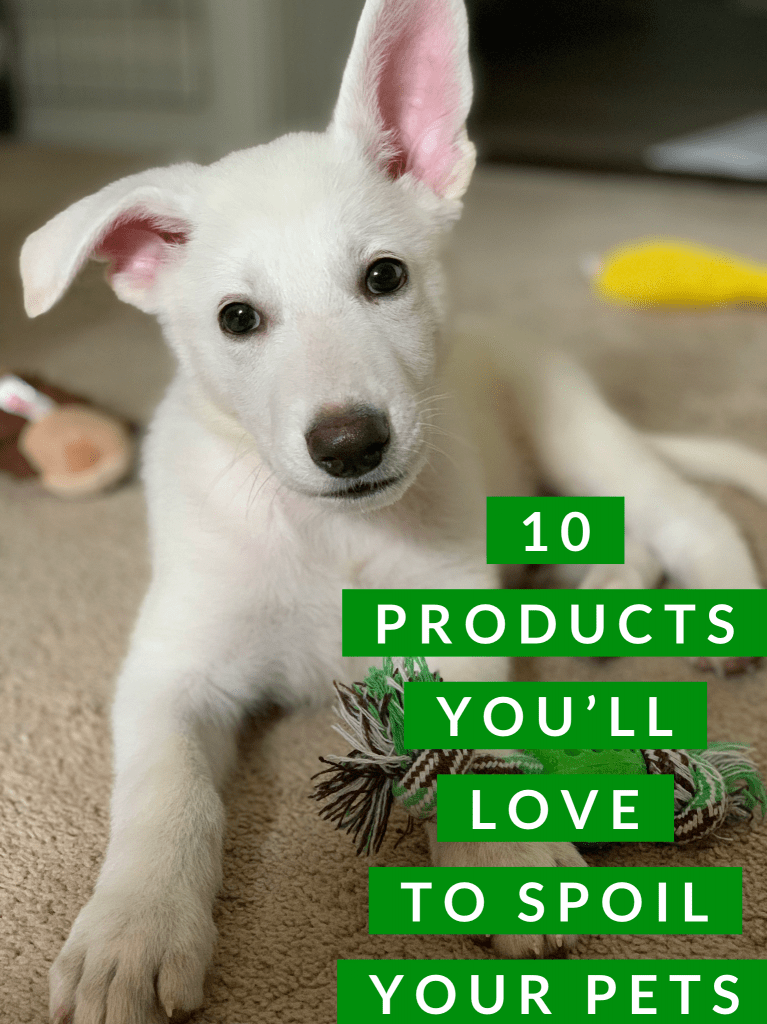 10 Products You'll Love To Spoil Your Pets
