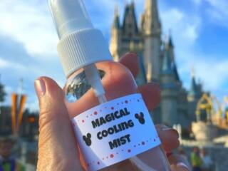 magical cooling spray bottle in front of Cinderella Castle Disney World Florida