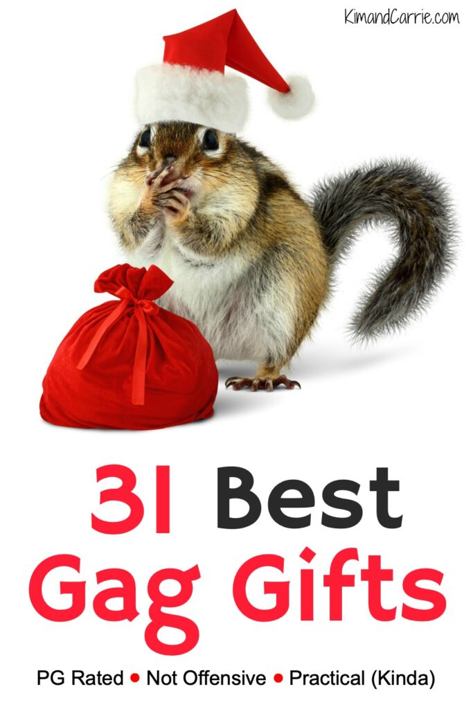 chipmunk wearing Santa hat with a tiny red bag of best gag gifts