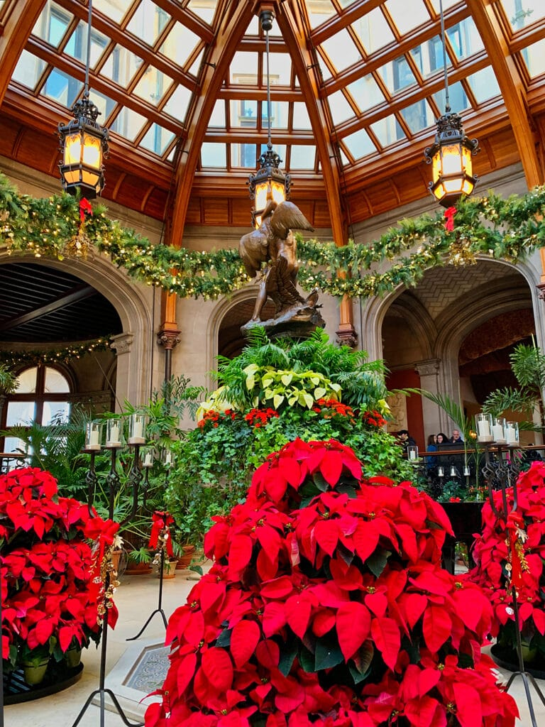 poinsettias in garden room with glass ceiling at Biltmore House