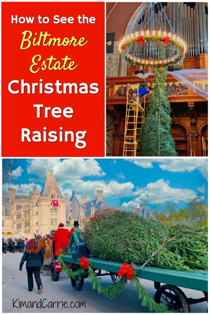 Biltmore Estate Christmas tree raising