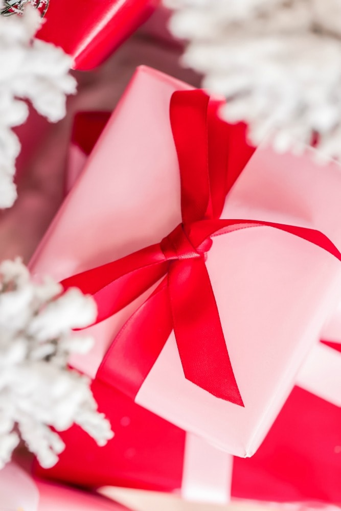 present wrapped in pink paper and red bow under white tree branches