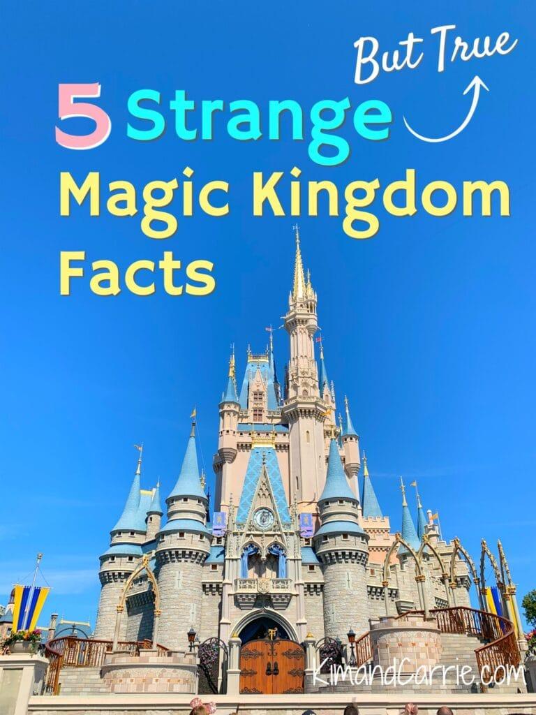 Magic Kingdom Castle Orlando